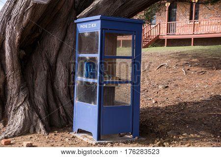 Blue phone box with old tree on Maria Island in Tasmania, Australia