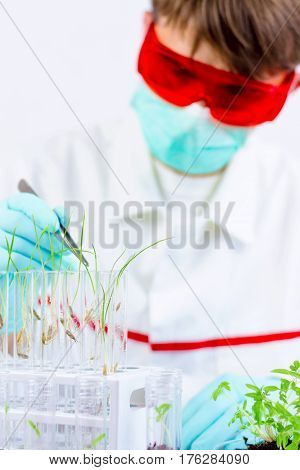 Testing Gmo Products