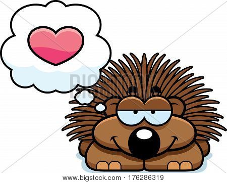 Little Porcupine In Love