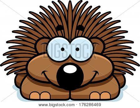 Smiling Little Porcupine
