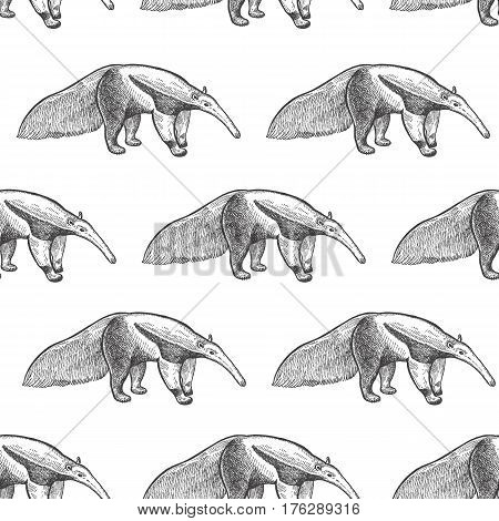 Giant anteater. Seamless pattern with animals South America. Hand drawing of wildlife. Vector illustration art. Black and white. Old engraving. Vintage. Design for fabrics paper textiles fashion.