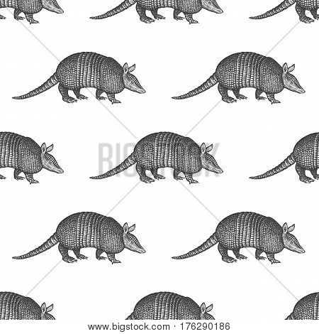 Armadillo. Seamless pattern with animals South America. Hand drawing of wildlife. Vector illustration art. Black and white. Old engraving. Vintage. Design for fabrics; paper; textiles; fashion.