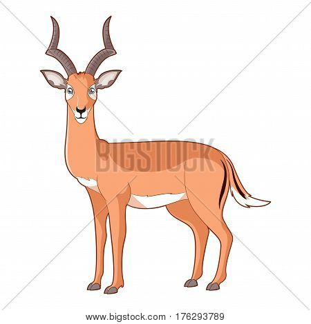 Vector image of the Cartoon smiling Impala