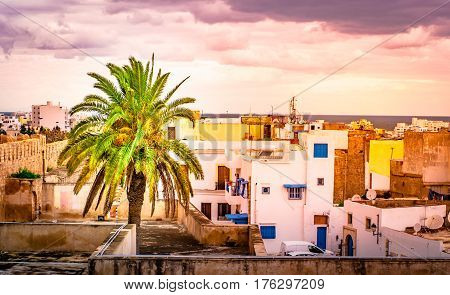 A street in Medina in Sousse, Tunisia. Magical space of medieval town with colorful walls and green palm tree.
