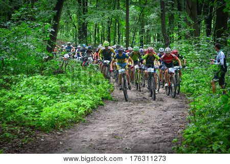 LVIV, UKRAINE - AUGUST 17, 2016: O. Todorchak N2, D. Sokolov N4, E. Zakora N5, with group of MTB cyclists on start line competing in the forest near Lviv in Ukraine at 4th round of Amateur XC Cup of Ukraine 2016.