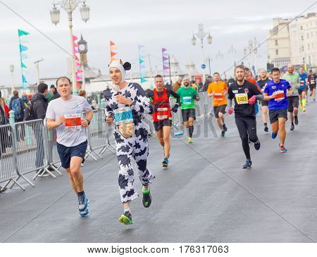 BRIGHTON GREAT BRITAIN - FEB 26 2017: Man dressed as a cow and competitors r running in the Vitality Brighton half marathon competition. February 26 2017 in Brighton Great Britain