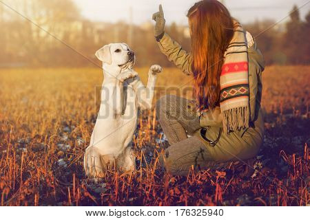 Woman and and sweet white dog during training on a field