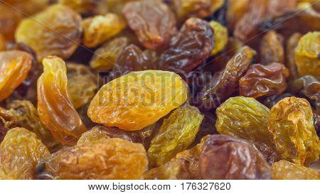 Dried grape raisins background close up, food.