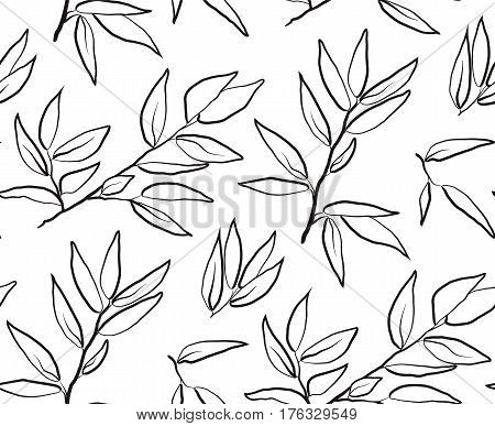 Eucalyptus longifolia woolly butt gum-tree leaves brunch sprig organic seamless pattern. Vector black linear line beautiful herbal laurel leaf plant nature illustration isolated on white background.