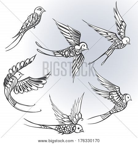 Freehand Drawing Of Birds Illustrations. Swallows