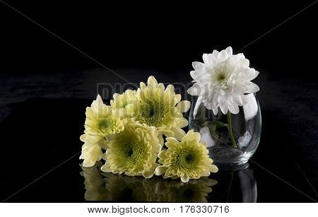 Bunch of yellow chrysanthemum and a white chrysanthemum in a vase