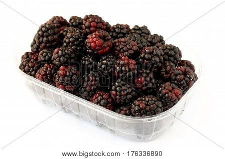 Blackberries in tray on a white background