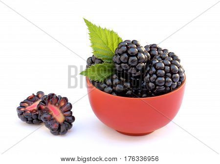 Blackberries in a bowl and cut berry isolated on white