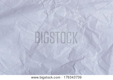 Crumpled Paper Sheet