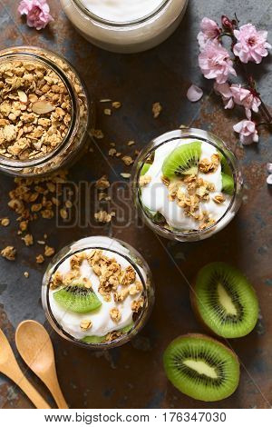 Yogurt parfait with fresh kiwi and crunchy almond and oatmeal granola in glasses with ingredients on the side photographed overhead on slate with natural light (Selective Focus Focus on the top of the parfait)