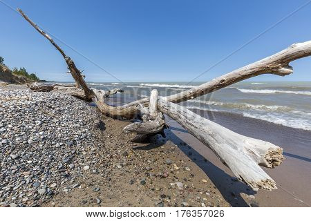 Driftwood And Pebbles On A Lake Huron Beach - Ontario, Canada