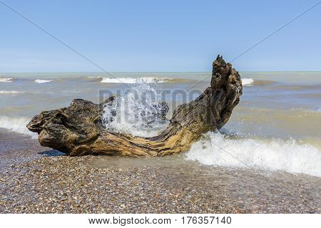 Waves Crashing Over Driftwood On A Lake Huron Beach - Ontario, Canada