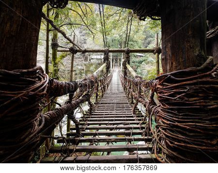 Bridge of vines and wood crossing a river