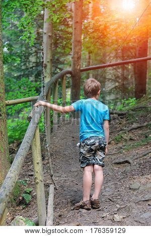 Boy stands among trees in forest park