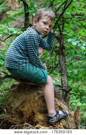 Small boy in striped sweater and shorts in summer forest park