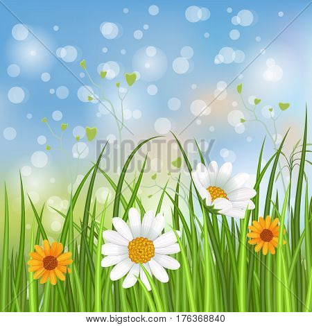Spring banner with blooming chamomile flower and green grass on blurred background vector illustration. Floral decorated spring design for holiday, romantic celebration card, spring meadow template