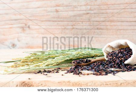 The Brown Raw Rice In Sack Bag With  Dried Rice Plant On Wooden Table Background.