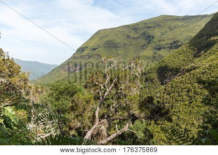 Picturesque aerial panorama of mountains and rainforest hills on Madeira island Portugal.