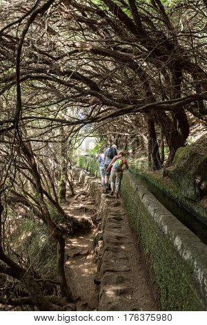 MADEIRA PORTUGAL - SEPTEMBER 6 2016: Tourist is walking along levada canal. Madeira island Portugal
