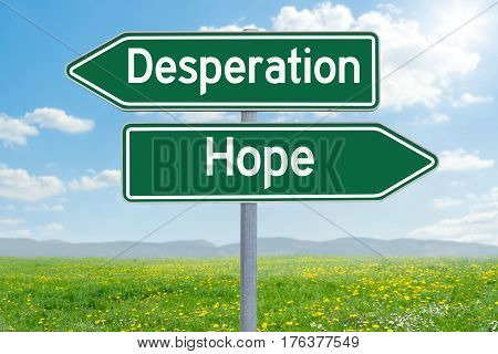 Two Green Direction Signs - Desperation Or Hope