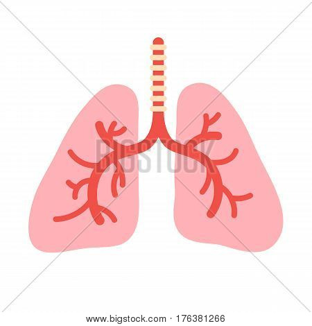 Human lungs anatomy. Organs bronchial system symbol. Vector illustration in cartoon style isolated on white background