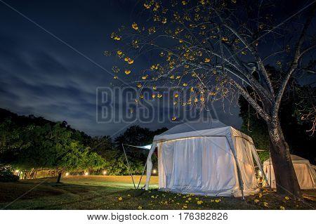 african safari camping tent and beautiful blue night sky
