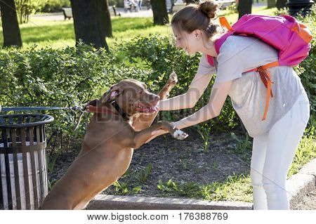 meeting a young girl in the Park with the dog, happiness, freindship and communication