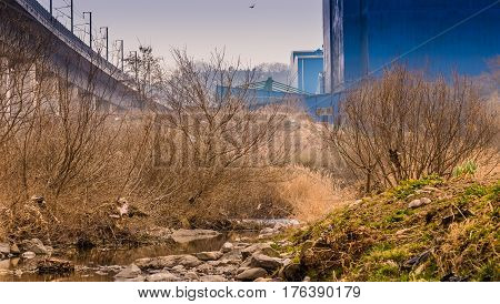 Landscape of a small stream with a rocking shoreline and trees with a blue building and a bridge on either side and the silhouette of a bird in the sky