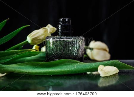 Perfume with green leaves in black background