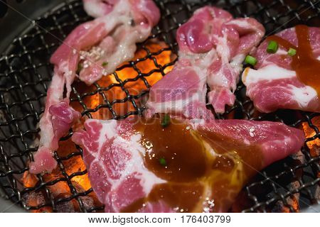 Raw Pork Slice For Barbecue Japanese Style Yakiniku. Shallow Focus.