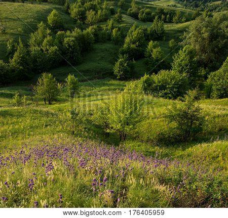 Amazing beautiful spring landscape in hilly terrain. Ukraine. Europe.