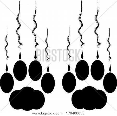 Cat paws with claws and scratches on white background. Vector illustration.
