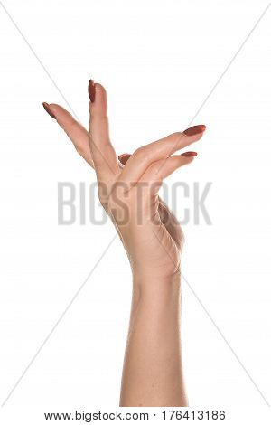 Beautiful and graceful female hand on a white background shows different gestures.