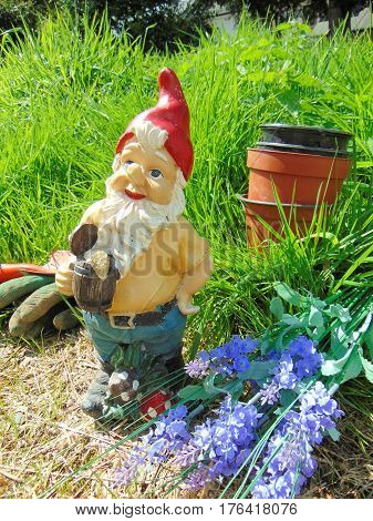 Garden gnome surrounded by grass and tools