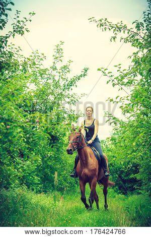 Animal horsemanship concept. Young woman ridding on a horse through garden on sunny spring day