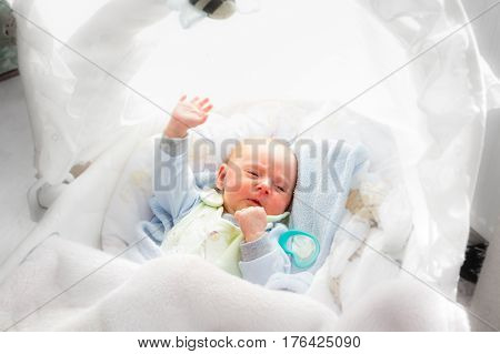 Little Newborn Baby Lying In Blanket