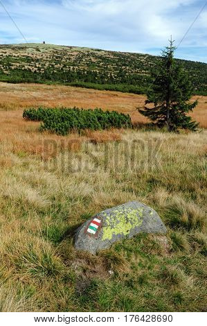 View of the rocky landscape of the Krkonose