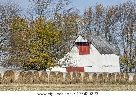 An old white barn with red doors stands behind a line of hay rolls on a rural Indiana farm.