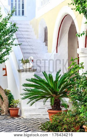 Peaceful courtyard with green potted plants of Monastery Panormitis on the island of Symi, Greece