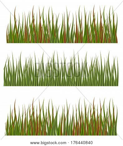 Green grass borders set nature lawn meadow spring vector illustration. Environment natural pattern horizontal lush green grass. Freshness herb land green grass plant field.