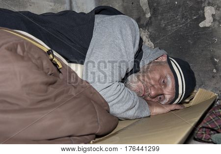 Mature homeless man sleeping on cardboard outdoors