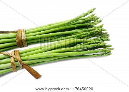 Bundle of fresh asparagus on white background.
