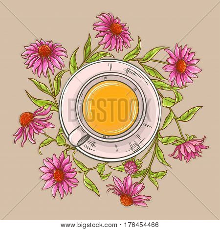 cup of echinacea tea on color background