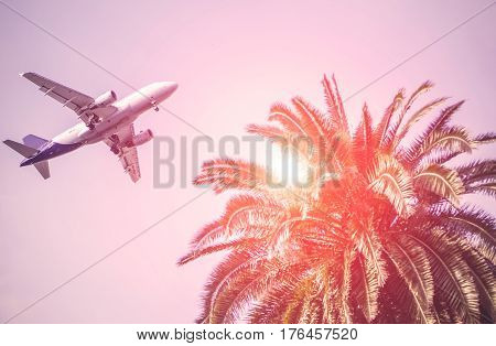 A view of an airplane flying across the clear sky and a palmtop next to it - Sunshine coming through the palm tree fronds - Transportation vacation and holidays concept - Vintage edit