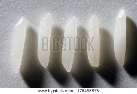 Close up of Five Basmati rice grains